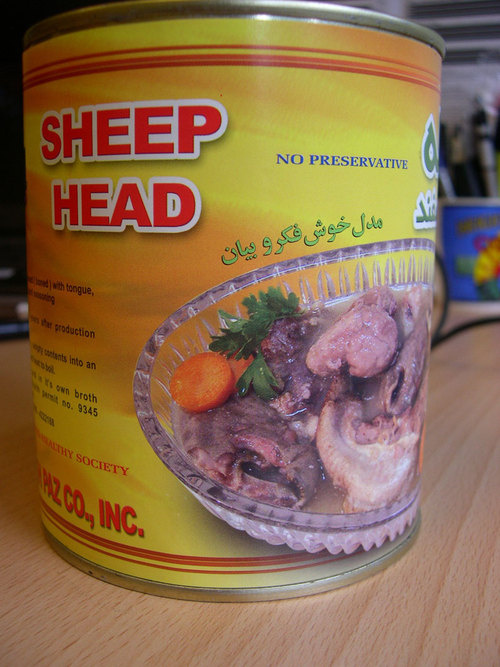 how to tell if a dorper sheep ison heat