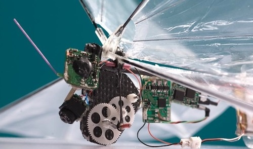 One Day a Tiny Flapping-Wing UAV May Spy on You