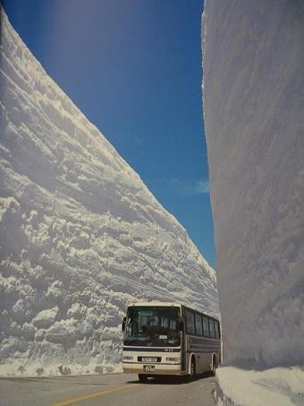 340x_bus-in-winter-reduced.jpg