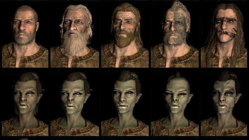 Skyrim races for each of skyrim s races