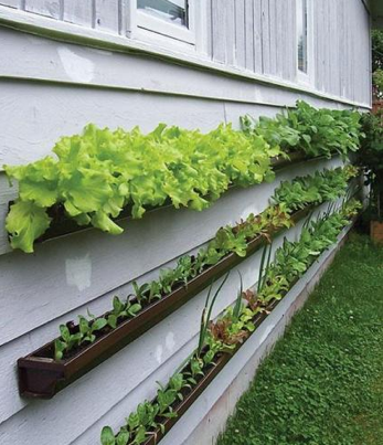 Small Gardens Design On If You D Love To Do A Little At Home Gardening But